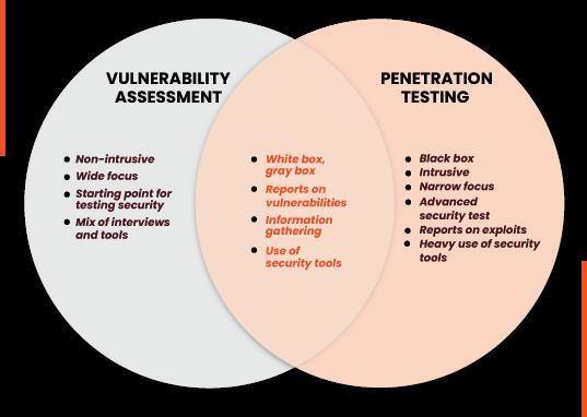 Vulnerability Assessment vs Penetration Testing